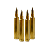 Picture for category RIFLE AMMO